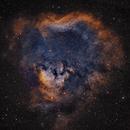 NGC7822 and Ced 214,                                ParyshevDenis