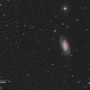 Galaxie NGC2903 - Sadr Espagne,                                Julien Bourdette