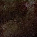 Cygnus,                                William Spurr