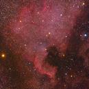 NGC 7000,                                Carsten Dosche