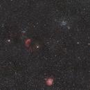 Jellyfish and Monkey Head Nebula Widefield,                                Arno Rottal