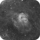 IC 410 H-Alpha,                                Carlo Rocchi