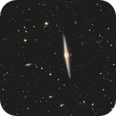 NGC4565 Needle Galaxy,                                tbcgeorge