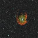 NGC-2174 - 2175,                                Carles Zerbst