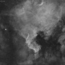 NGC 7000 North America Ha,                                Leonardo Ciuffolotti