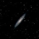 NGC 253,                                Jim Davis