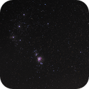 Orion nebula,                                Rastapopoulette