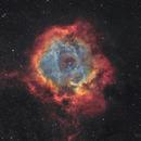 Rosette Nebula Narrowband,                                Nicolas Kizilian