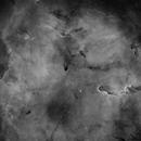 IC 1396 - Elephant's Trunk Nebula,                                Dagolaf