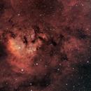 NGC 7822 - modified bicolor,                                Thomas Richter