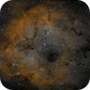 IC 1396,                                VoidPointer