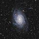 NGC 6744 - Spiral Galaxy in Pavo,                                Martin Junius
