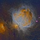 M42 Orion nebula in narrowbands,                                David Nguyen