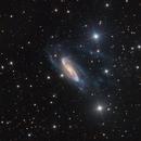 NGC 3981,                                SCObservatory