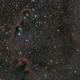 IC1396 - The Elephant's Trunk Nebula - my First LRGB capture,                                Patrick Cosgrove