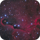 IC1396 LRGB,                                Christopher Gomez