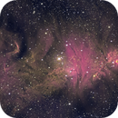NGC 2264, the Cone Nebula and Christmas Tree Cluster in Narrowband,                                Gabriel Cardona