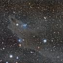 Shark Nebula, vdB149, vdB150, LDN1235,                                Annette & Holger
