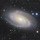 M81 Bode's Galaxy,                                physics5mickey