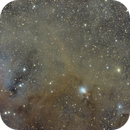 NGC 1333 and surrounding in RGB,                                Janos Barabas