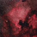 The North America Nebula,                                Samuel Granovsky