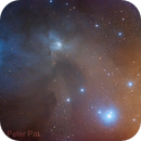 Rho Ophiuchi through an AT65EDQ,                                Peter Pat