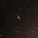 NGC 2683,                                Ryan Betts