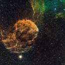 IC443 - Nebulosa Medusa o Jellyfish Nebula,                                Bror Federico Ced...