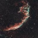 NGC 6992 Veil Nebula,                                Tom Carrico