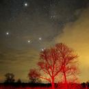Stars Art,                                Vital
