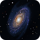 Bode's Galaxy,                                Ed Albin