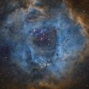 rosette nebula,                                zac