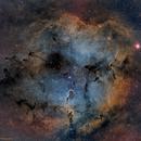 IC 1396 Narrowband SHO 4 Panel Mosaic,                                Greg Nelson