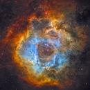 Rosette Nebula,                                Theodore Arampatzoglou
