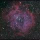 NGC 2244 Rosette Nebula,                                Roger Groom