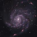 M101,                                mr1337