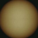 Our Sun in white light,                                RonAdams