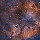 IC1396 in HOO,                                Ben Kerlik