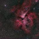 NGC 3372, Carina Nebula,                                Doug Lalla