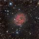 IC5146: Cocoon Nebula,                                Fritz