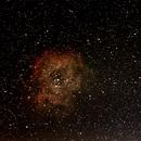 Rosette Nebula,                                Richard O