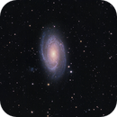 M 81,                                Dave59