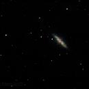 M82,                                Dylan Woodbrey