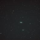 M102,                                Joan Riu