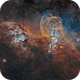 Celestial Freedom: The Statue of Liberty Nebula in Hubble palette NGC 3576,                                Bogdan Borz