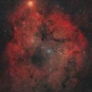 IC 1396,                                Graeme Holyoake