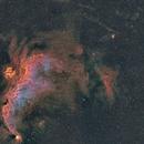 Seagull Nebula IC2177 4 Panel Mosaic,                                Sean McCully