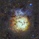 The Trifid Nebula - M20, SHO,                                Niall MacNeill