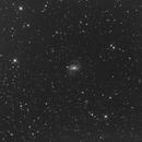 NGC6951,                                astrognocq