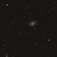 "Die ""Semikolon-Galaxie"" NGC 772 im Widder (Aries),                                astrobrandy"